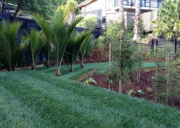Synthetic Lawns & Turf